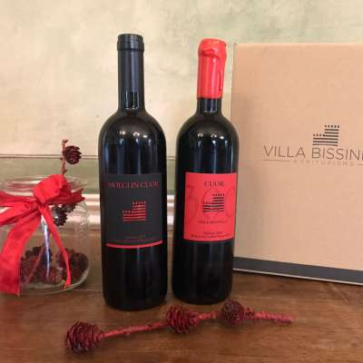 CUOR 300 and MOLCI IN CUOR – new wines from Villa Bissiniga